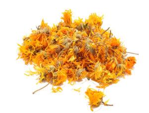Calendula Flowers Petals